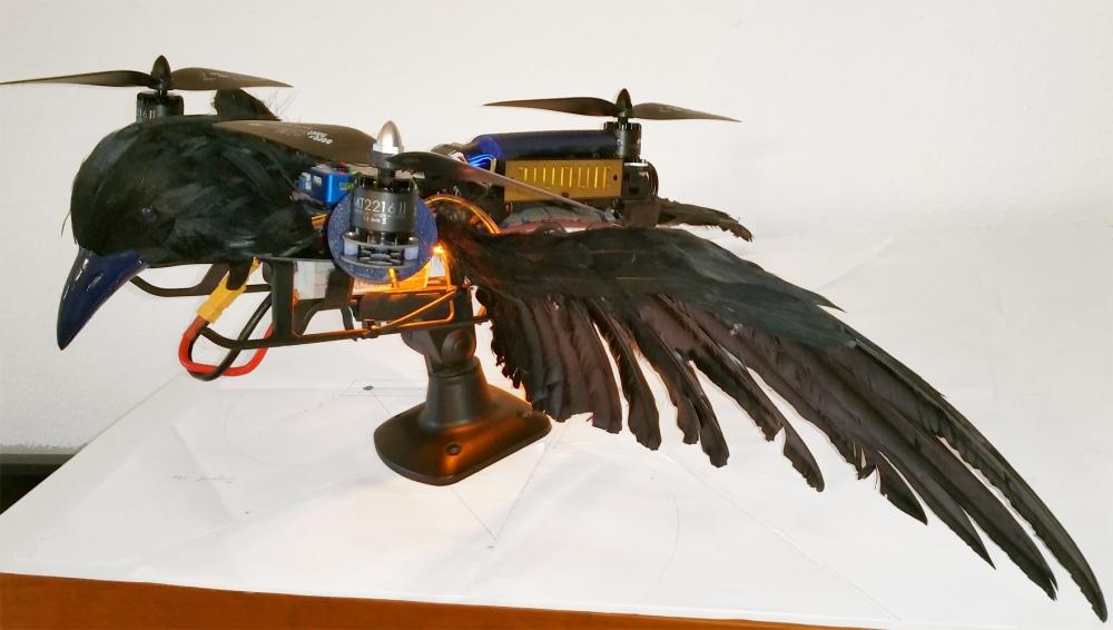 TriAngel-Pticon-Mestre 09 klein