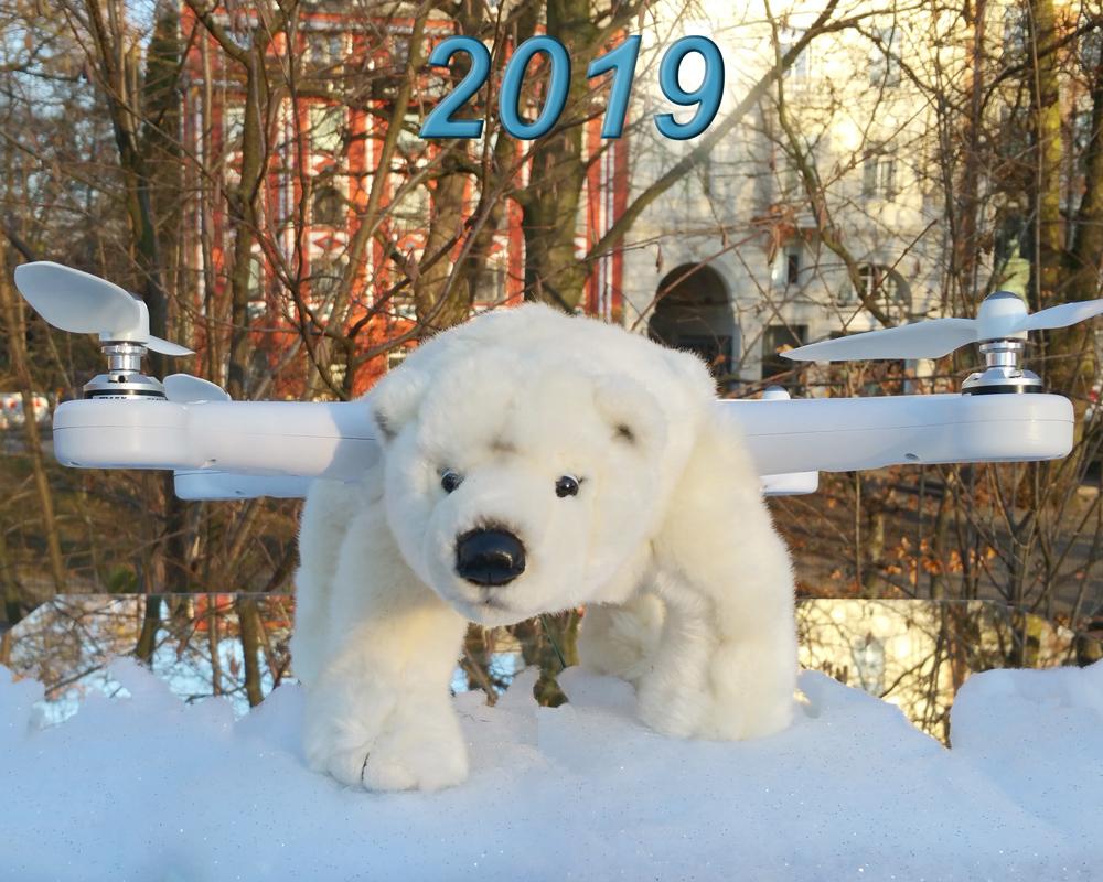 PuhB Polar Bear 2 2019 klein 01